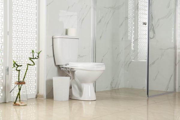 Prix de pose de toilettes